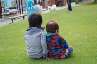 芝生に座る兄弟の写真・画像素材[1200599]