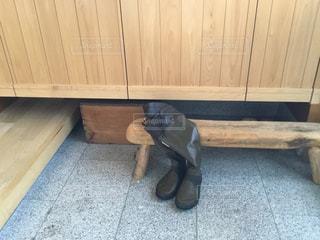 木製の床の上に横になっている猫の写真・画像素材[1236377]