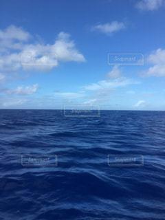 海で波に乗っている男の写真・画像素材[1200846]