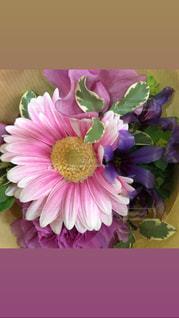 紫色の花一杯の花瓶の写真・画像素材[1201868]