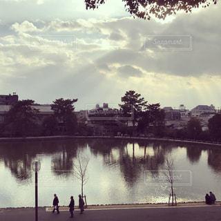 光の射し込む猿沢池の午後の写真・画像素材[1202374]