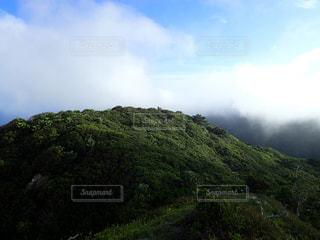 父島  赤旗山の写真・画像素材[1206467]