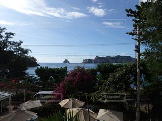 父島  二見湾の眺めの写真・画像素材[1206473]