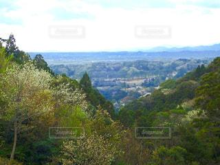 山の中腹からの眺めの写真・画像素材[1270942]