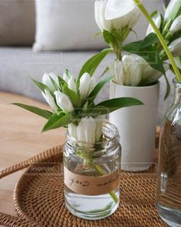 リビングの白い花の写真・画像素材[1432277]