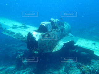 パラオ共和国の海底に眠る飛行機の写真・画像素材[1202931]
