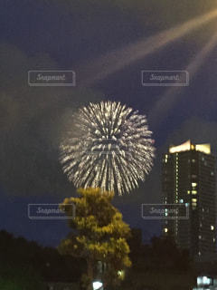 空に咲く花、花火の写真・画像素材[1202848]