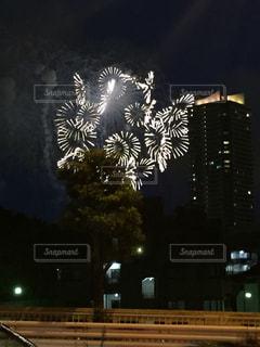 夜空の花火の写真・画像素材[1204195]
