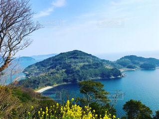山からの景色の写真・画像素材[1203253]
