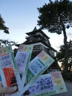丸岡城とチケットの写真・画像素材[1222058]