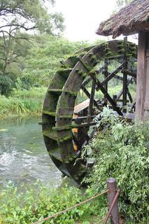 わさび田農園 長野県の写真・画像素材[1766549]