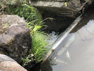 農業用用水路。の写真・画像素材[1206733]