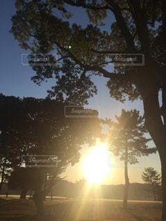 日出の写真・画像素材[1213228]