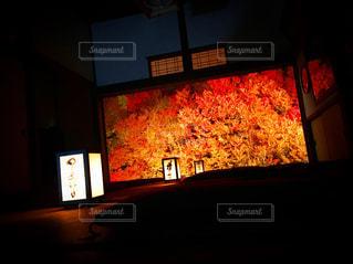 風景 - No.258577