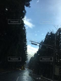 青空の写真・画像素材[315512]