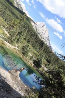 背景の山と木の写真・画像素材[1207428]