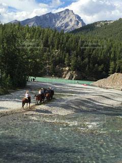 山の中で馬に乗るの写真・画像素材[1532448]