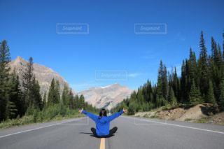 自然いっぱいの道路の写真・画像素材[1532458]