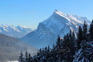 雪に覆われた山の写真・画像素材[1532464]