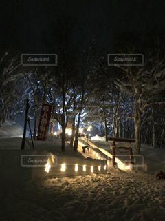 地面の雪の木の写真・画像素材[1868505]