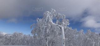 雪に覆われた山の写真・画像素材[2098236]