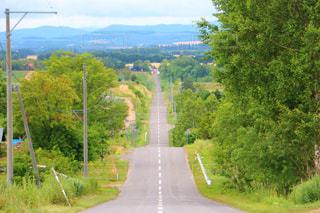 ジェットコースターの路の写真・画像素材[2705593]