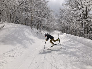 美しい雪景色の写真・画像素材[3356038]