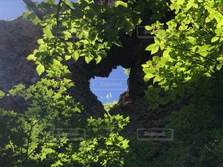 岩でできたハートの写真・画像素材[3370823]