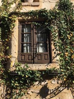 茂みのある窓の写真・画像素材[1208727]
