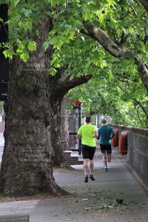 早朝ジョギングの写真・画像素材[2864677]