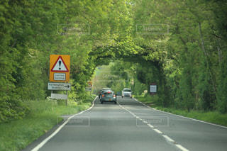 田舎道を走る車の写真・画像素材[2864676]
