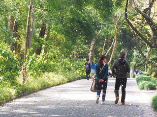 夫婦でお散歩の写真・画像素材[1212991]