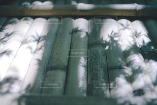 木漏れ日の写真・画像素材[1227173]