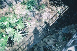 旅写真、影遊び。の写真・画像素材[1227225]
