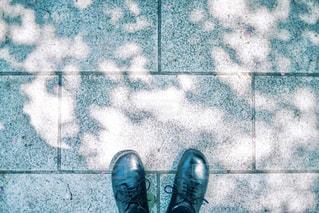 木漏れ日の写真・画像素材[1227226]