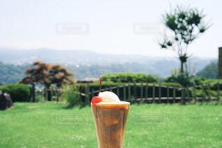 夏旅とコーヒーフロートの写真・画像素材[1308953]