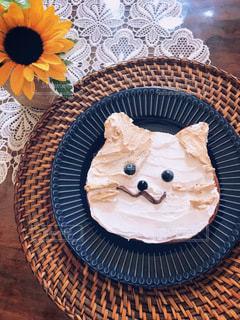ねこ食パンの写真・画像素材[3565776]