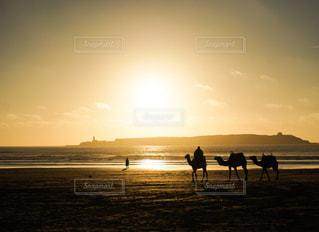 モロッコの海岸の写真・画像素材[1213591]