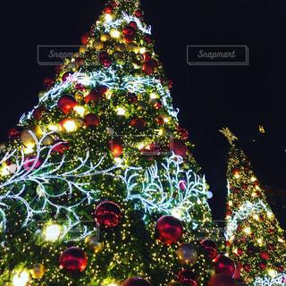夜ライトアップされたクリスマス ツリー - No.1214219