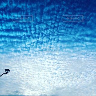 青空にうろこ雲の写真・画像素材[1218109]