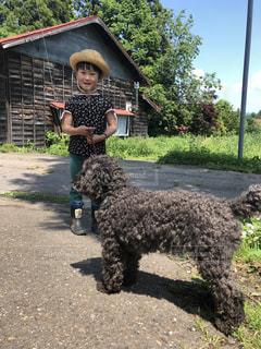 犬の散歩に行く女の子の写真・画像素材[1223490]