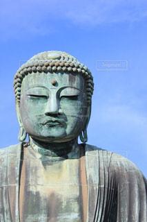 鎌倉大仏の写真・画像素材[1243161]