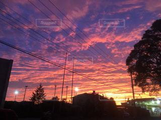 綺麗な夕日の写真・画像素材[1219176]