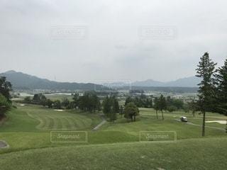 背景の木と大規模なグリーン フィールドの写真・画像素材[1215167]