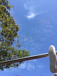 空を飛んでいる飛行機の写真・画像素材[1217427]