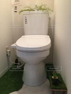 草むらの中のトイレの写真・画像素材[1218521]