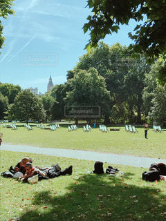 ロンドン・セントジェームズパークの写真・画像素材[1232062]