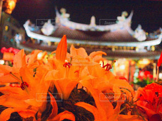 台北の寺院の写真・画像素材[1237745]