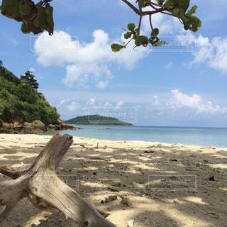 貸切状態のビーチの写真・画像素材[1224615]