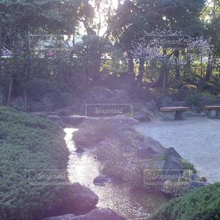 庭の写真・画像素材[369384]